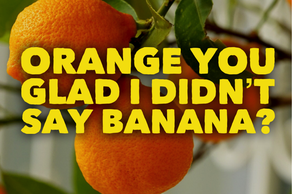 ORANGE YOU GLAD I DIDN'T SAY BANANA